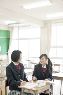 一緒に勉強する女子校生の写真素材 [FYI02509289]