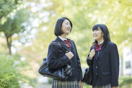 笑顔で会話をする女子高校生の写真素材 [FYI02511051]