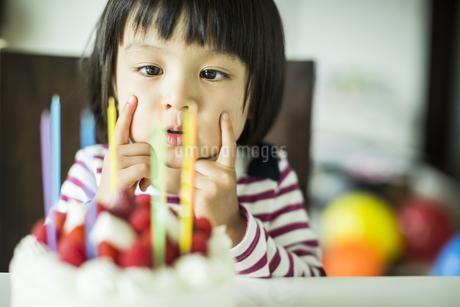 ケーキを見つめる女の子の写真素材 [FYI02511393]