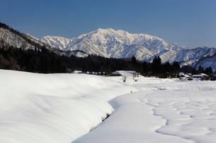 雪の守門岳の写真素材 [FYI02512399]