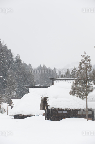 雪の中の民家の写真素材 [FYI02512433]