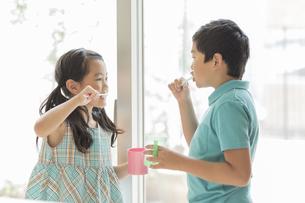 歯磨きをする兄と妹の写真素材 [FYI02512705]