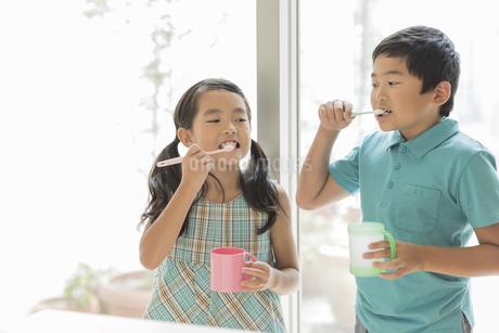 歯磨きをする兄と妹の写真素材 [FYI02512803]