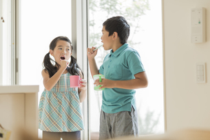 歯磨きをする兄と妹の写真素材 [FYI02513020]