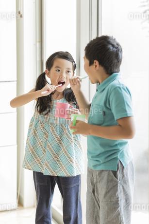 歯磨きをする兄と妹の写真素材 [FYI02513196]