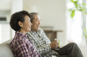 笑顔のシニア夫婦の写真素材 [FYI02513220]