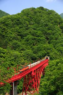 黒部渓谷鉄道と新山彦橋の写真素材 [FYI02514831]
