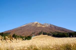 桝水原より望む大山の写真素材 [FYI02517489]