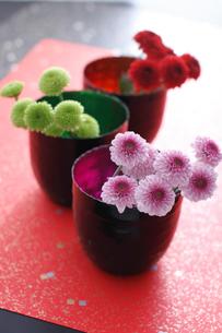 内側に色の付いた器にいけた小菊の花の写真素材 [FYI02517847]