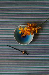 青い和皿に乗せたランの花と黒いかんざしの写真素材 [FYI02517883]