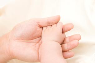 赤ちゃんの手の写真素材 [FYI02518099]