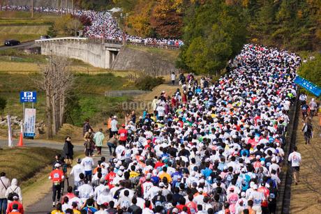 マラソンの写真素材 [FYI02518295]