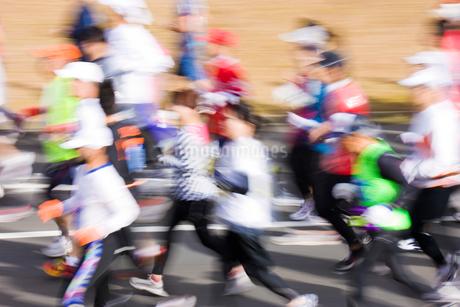 マラソンの写真素材 [FYI02518829]