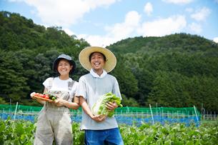 畑で野菜を持つ男女の写真素材 [FYI02520582]