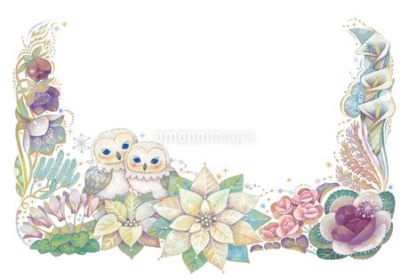 12月(冬)をイメージした花とフクロウの飾りのイラスト素材 [FYI02521998]