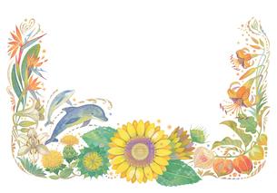 8月(夏)をイメージした花とイルカの飾りのイラスト素材 [FYI02522176]