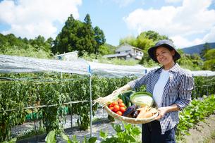 畑で野菜を盛ったカゴを持つ女性の写真素材 [FYI02522257]
