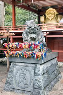 日光二荒山神社の「良さん」狛犬と大黒様の写真素材 [FYI02522519]