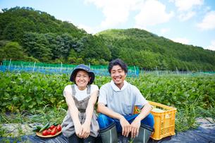 畑の前の土手に座る野菜を持つ男女の写真素材 [FYI02523730]