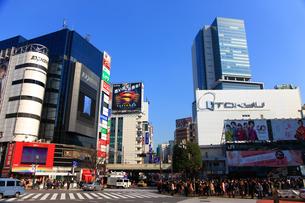 渋谷駅前交差点の写真素材 [FYI02525549]
