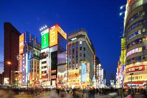 夕暮れの歌舞伎町の写真素材 [FYI02525606]