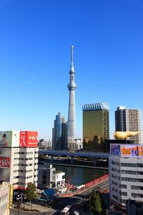 東京スカイツリーの写真素材 [FYI02525820]
