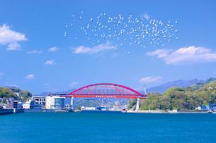 音戸大橋と第2音戸大橋の写真素材 [FYI02525955]