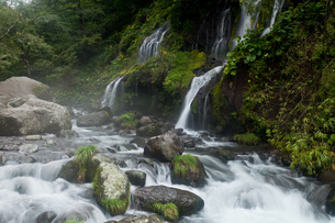 吐竜の滝全景の写真素材 [FYI02526267]