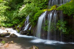 吐竜の滝の写真素材 [FYI02526374]