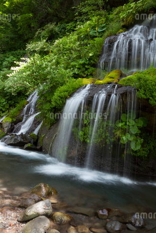 吐竜の滝の写真素材 [FYI02526603]