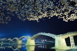 桜咲く錦帯橋の夜景の写真素材 [FYI02526857]