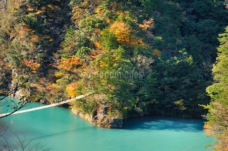 寸又峡夢の吊り橋の写真素材 [FYI02529359]