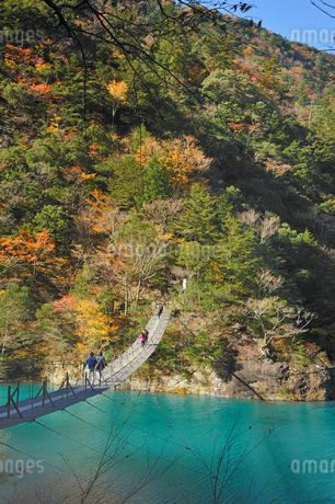 寸又峡夢の吊り橋の写真素材 [FYI02529375]