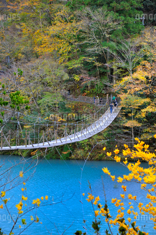 寸又峡夢の吊り橋の写真素材 [FYI02529537]