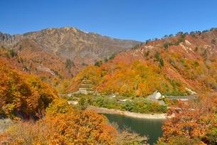 田子倉湖付近の紅葉と浅草岳の写真素材 [FYI02533531]