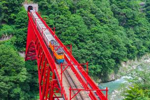 新山彦橋を行く黒部峡谷鉄道の写真素材 [FYI02537138]