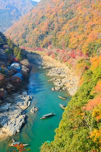 嵐山公園から望む紅葉した京都嵐山と保津川の写真素材 [FYI02540313]