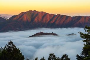 竹田城の雲海の写真素材 [FYI02540557]