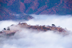 竹田城の雲海の写真素材 [FYI02540786]