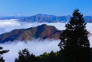 雲海と青空の写真素材 [FYI02541037]