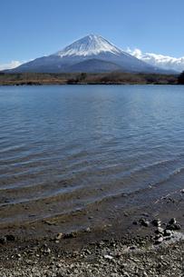 精進湖よりの富士の写真素材 [FYI02541047]