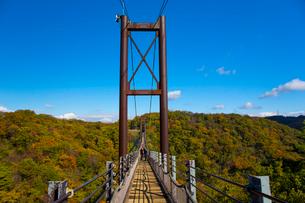 ほしだ園地紅葉と吊橋の写真素材 [FYI02541226]