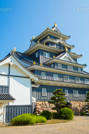 岡山城天守の写真素材 [FYI02541513]