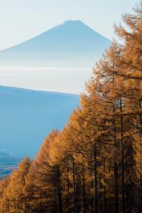 八ヶ岳高原ラインより朝霧の富士山の写真素材 [FYI02542547]