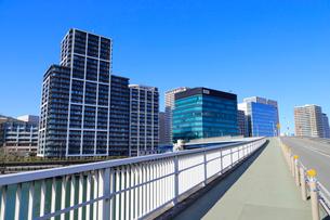 品川シーサイドと八潮橋の写真素材 [FYI02542764]