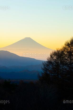 八ヶ岳牧場より朝焼けの富士山の写真素材 [FYI02542804]