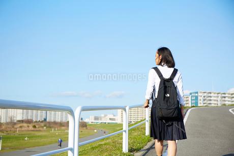 道を歩く女子高生の後ろ姿の写真素材 [FYI02543702]