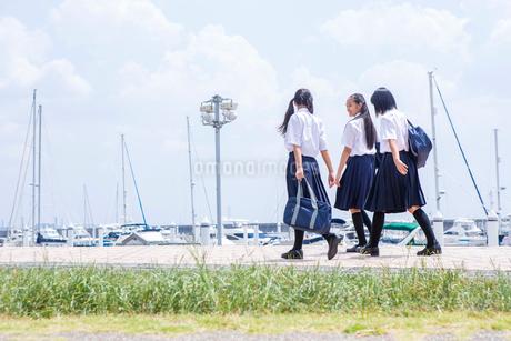並んで歩く中学生の写真素材 [FYI02545462]