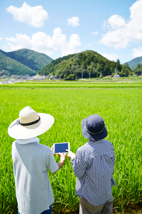 水田の前でタブレットを見る男女の後ろ姿の写真素材 [FYI02547548]