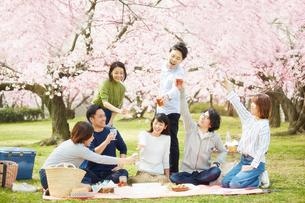 お花見をする男女7人の写真素材 [FYI02547550]